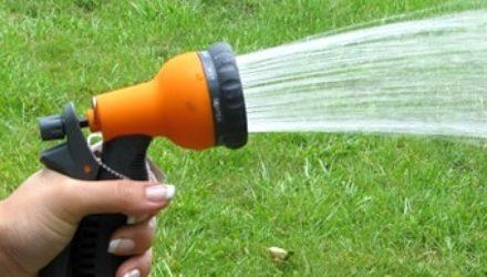 Как правильно поливать огород (пригодится новичкам)